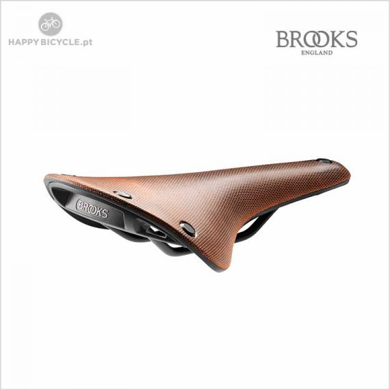 Brooks Cambium C17 Bronze